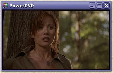 Play a part of the movie, using a software DVD-player (for example PowerDVD)